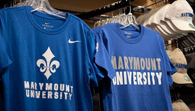 Blue Shirt Program