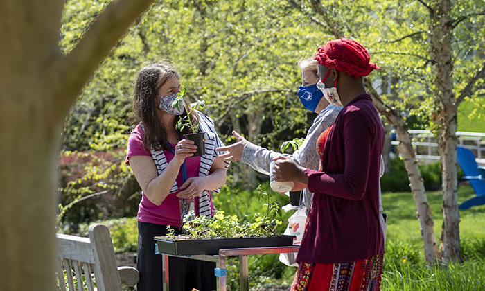 During a Food For Thought club event, Dr. Agolini hands out free plants and herbs to student, staff and faculty members.