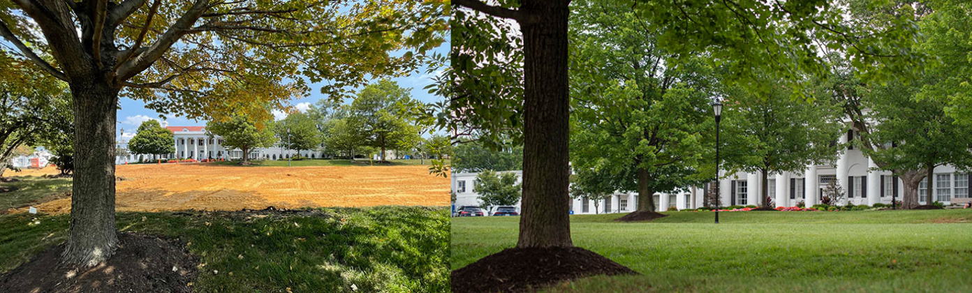 A look at the front lawn before and after demolition of the parking lot.