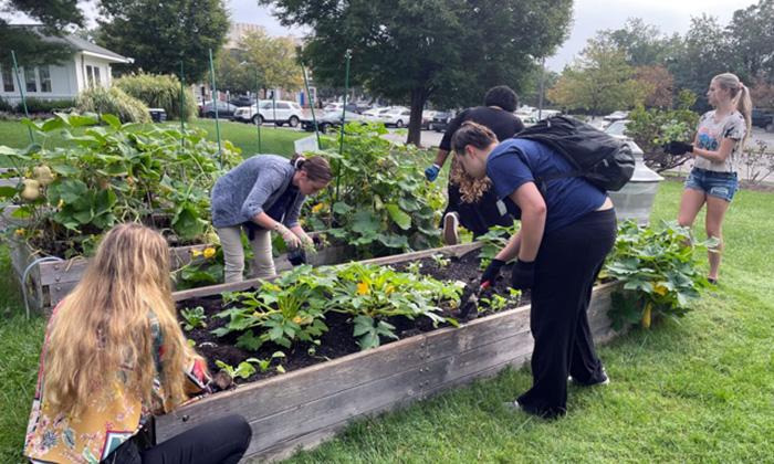 Student volunteers give back at Marymount's community garden prior to the Virginias Collegiate Honors Council's Fall Conference